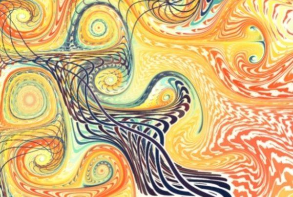 DREAM GALLERY - Blazing Swan