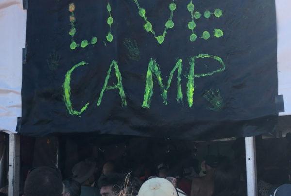 LIVE CAMP - Blazing Swan